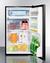 FF433ESADA Refrigerator Freezer Full