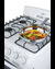 RG244WS Gas Range Detail